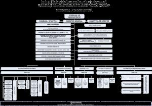 organigrama INCD